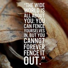 The wide world is all about you: You can fence yourselves in, but you cannot forever fence it out - J.R.R. Tolkien