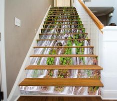 Waterfall leaf 353 Risers Decoration Photo Mural Vinyl Decal Wallpaper US Decoration Photo, Stair Risers, House Stairs, Natural Scenery, Stairway To Heaven, Vinyl Wallpaper, Beautiful Waterfalls, Stairways, Wall Murals