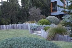 Fiona Brockhoff Design » Yencken Material's and Planting Concepts