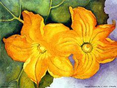 Squash Flowers No. 1 (1925) - Georgia O'Keefe