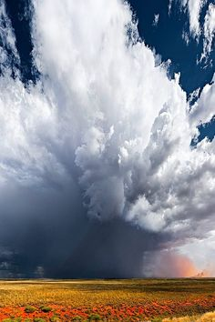 Storm Cloud, Pilbara, Washington by Christian Fletcher. I'm blown away (no pun intended) by this incredible concoction. That rain curtain alone would make you wonder if this was a storm of the century. Weather Cloud, Wild Weather, Storm Clouds, Sky And Clouds, All Nature, Amazing Nature, Beautiful Sky, Beautiful World, Landscape Photography