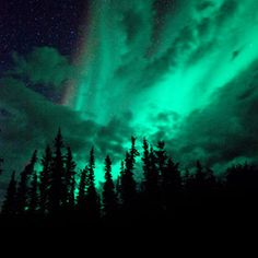 See the Aurora Australis (I have seen the Borealis)