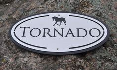Great horse stall name plate that will stand the test of time in stainless steel!