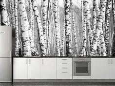 Birch forest Wall Mural | Eazywallz