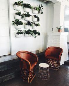 Communal Coffee, San Diego, North Parl  Morning folks  . #wishtobethere #breakfast #goodmorning #sandiego #sandiegoliving #latergram #throwback #california #coffeeshop #interior #interiordesign #thatsdarling #photooftheday