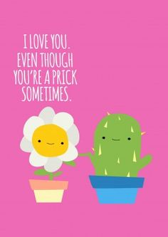A Prick|Anniversary Card  Love You. Even Though You're A Prick Sometimes. What did the Sunflower say to the Cactus? A funny Anniversary or Valentine's Day card for your husband or boyfriend