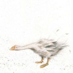 'Goosie Goosie' available now from Wrendale Designs. Watercolor Bird, Watercolor Animals, Watercolor Paintings, Watercolours, Animal Paintings, Animal Drawings, Art Drawings, Different Forms Of Art, Wrendale Designs