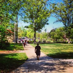 sunny day on SIU' Carbondale campus! Southern Illinois, State Government, Sunny Days, Egypt, Sidewalk, Warm, Adventure, City, Travel