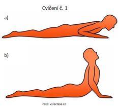Jak rychle zmírnit bolesti zad s pár jednoduchými cviky Fitness, Health, Health Care, Salud