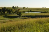 Time to Monitor Summer #Fish Kills in Farm Ponds: A #KState #wildlife specialist discusses reasons for summer fish kills in farm ponds and what can be done to prevent this problem. #Kansas
