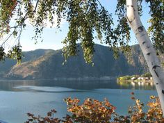 One of my favorite places...Wapato Point, Lake Chelan WA