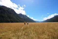 "traveloupe on Twitter: ""On our way to #milfordsound #eglintonvalley #fiordlandnationalpark #southisland #newzealand #travelcouple #dianaandstefano #traveloupe https://t.co/i1hzgDDnoT"""