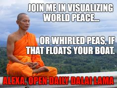 """""""Daily Dalai Lama"""" Alexa skill has 125+ quotes from the Dalai Lama on compassion, kindness, love, happiness and joy. Learn how you can help save Tibet by reading """"Restoring Tibet: Global Action Plan to Send the Dalai Lama Home"""" available on Amazon. #dalailama #tibet #selfhelp #selfimprovement #compassion #lovingkindness #love #happiness #quotes #alexaskills Alexa Skills, Float Your Boat, Happiness Quotes, World Peace, Dalai Lama, Tibet, Self Improvement, Law Of Attraction, Self Help"""