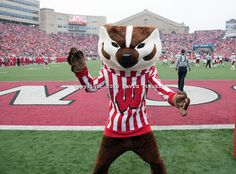 University of Wisconsin Madison Mascot | Wisconsin Badgers mascot Bucky Badger during an NCAA college football ...