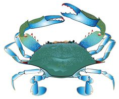 clipart of a waving blue crab royalty free vector illustration by rh pinterest com Blue Claw Crab Claws Up Clip Art Maryland Blue Crab Art