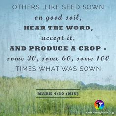 Others, like seed sown on good soil, hear the word, accept it, and produce a crop - some 30, some 60, some 100 times what was sown. Mark 4:20 (NIV) #bible #scripture #quote #christian #jesus #faith #niv #grace