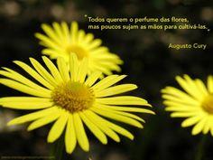 Todos querem o perfume das flores, mas poucos sujam as mãos para cultivá-las. #augustocury #mensagenscomamor #frases #escritores