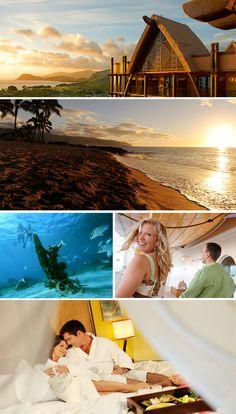Disney Aulani Resort -Hawaii  Hello honeymoon! see you in 130 days!