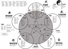 a map showing the relationship of the five elements in Traditional Chinese Medicine theory