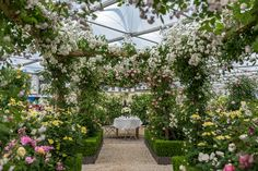 This year's Chelsea Flower Show rose garden features an impressive pergola walkway, offset by soft rose hedges. Gazebo, Pergola With Roof, Backyard Pergola, Pergola Shade, Pergola Plans, Pergola Ideas, Jacuzzi, Rose Hedge, Chelsea Flower Show 2018