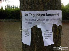 Mauerpark | #Prenzlauerberg // Mehr #NOTES findet ihr auf www.notesofberlin.com