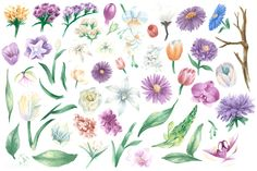 Free and Premium watercolor images, vectors and psd mockups Free Vector Illustration, Creative Illustration, Free Illustrations, Watercolor Images, Watercolor Flowers, Watercolor Ideas, Amazing Flowers, Colorful Flowers, Vintage Flowers
