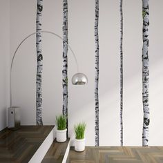 Birch Tree Wall Decals by WallsNeedLove Wall Decals