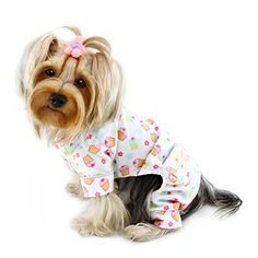 Adorable Cupcakes Fanatics Flannel Pajamas - S -- Insider's special review you can't miss. Read more  : Dog sweaters