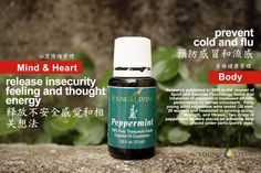 Young Living Essential Oils- better health...naturally!  nyoilslady.com Peppermint
