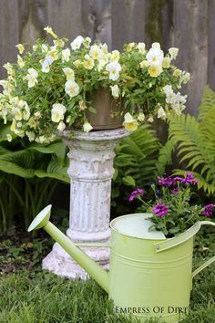 reuse of birdbath and watering can as containers