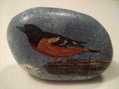 Oriole hand painted on a stone by Ann Kelly.