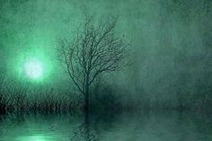 Shining darkness Fine Art Photography   fog by SkeeterPhotoArt