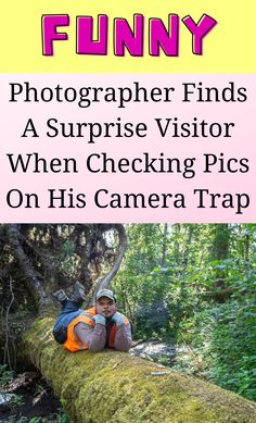 Photographer Humor, Rare Videos, Camera Shy, Find Picture, Bored Panda, I Smile, Funny Humor, Laugh Out Loud, Storytelling
