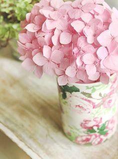 flowers.quenalbertini: Pink flowers | La vie en rose