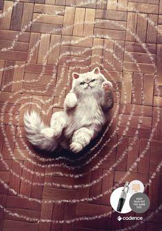 「ペットを同じサイズに保ちましょう」その一点にフォーカスした掃除機の広告 | AdGang