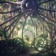 ***Beautiful hidden gardens and ironwork South of Broad, Charleston, SC