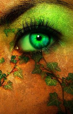 green eye and ivy