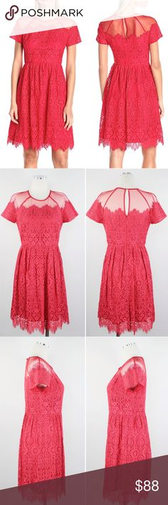 "Maggy London | Fit Flare Trellis Lace Dress N06 Maggy London Women's Dress Rose Trellis Invisible Zipper Closure with center back keyhole opening, Fit and Flare Skirt, Fitted Bodice, Cap Sleeve, Unlined Mesh Crewneckline, Elegantly Grazes Knee. Retails $168 Size: 2  Shoulder: 14R""  Sleeves: 14R""  Armpit to Armpit: 16.5""  Waist: 13.75""  Length: 37""  Material: 41% Nylon, 32% Cotton, 27% Rayon Country: China WT: 0.13 CSKU: N06; 22 Dress on model is for styling/fit reference only. All…"