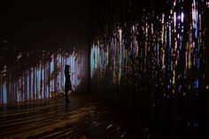 展覧会|東京都現代美術館|MUSEUM OF CONTEMPORARY ART TOKYO