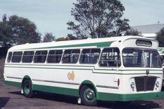 Shave bus service Bedford VAM5 (ex Action) (2).jpg (141.47 KiB) Viewed 1285 times