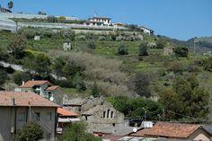Vallecrosia (IM) - Chiesa di Santa Crescenza
