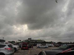 At Sun life stadium Miami, Dec 2013 New york jets vs miami dolphins
