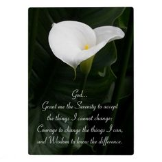 Serenity Prayer Lily Photo Plaque  #flowers #Zazzle #lilies