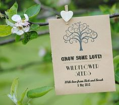 personalised 'grow some love' seed favour by wildflower favours | notonthehighstreet.com