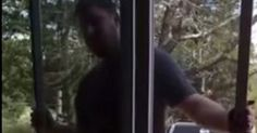 This Poor Guy Just Wanted To Fix His Screen Door, But Then This Happened