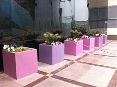 DOMANI @ Missoni Hotel Kuwait Pink & Purple planters