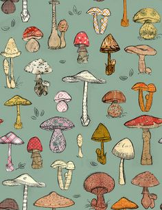 Mushroom Pattern Green by shelley lane, via Flickr
