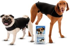 Enter to win The Anxiety Wrap to help your dog with thunderstorms and fireworks! (10 winners) http://www.dogtipper.com/giveaways-contests/2015/06/win-the-anxiety-wrap-10-winners.html