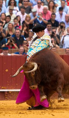 Entrevista José María Manzanares - Mundotoro.com Matador Costume, Beautiful Costumes, Andalusia, Cowboy Hats, Horses, Fine Art, Dancers, Animals, Tattoo