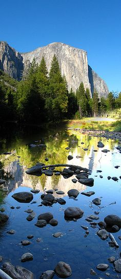Yosemite Naitonal Park